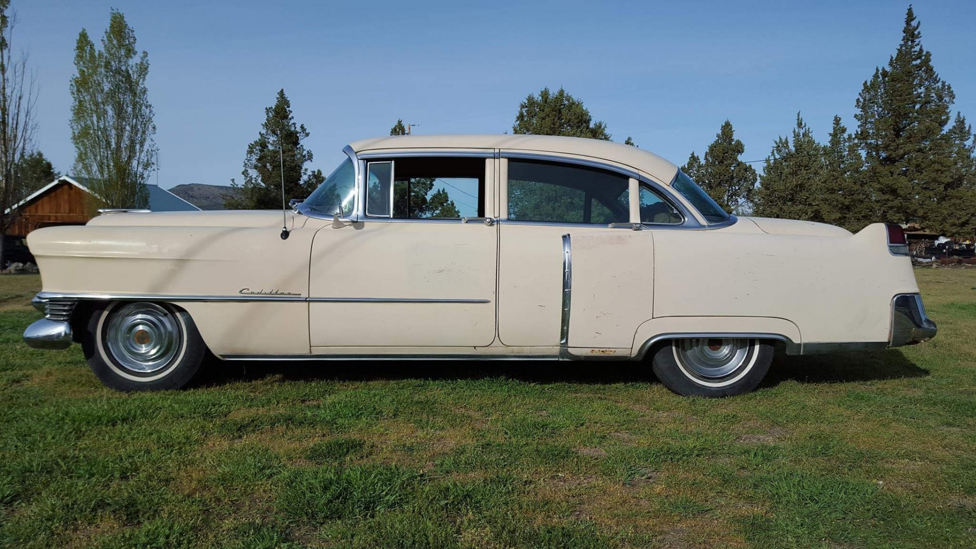 1954 Cadillac Sedan Deville (19)