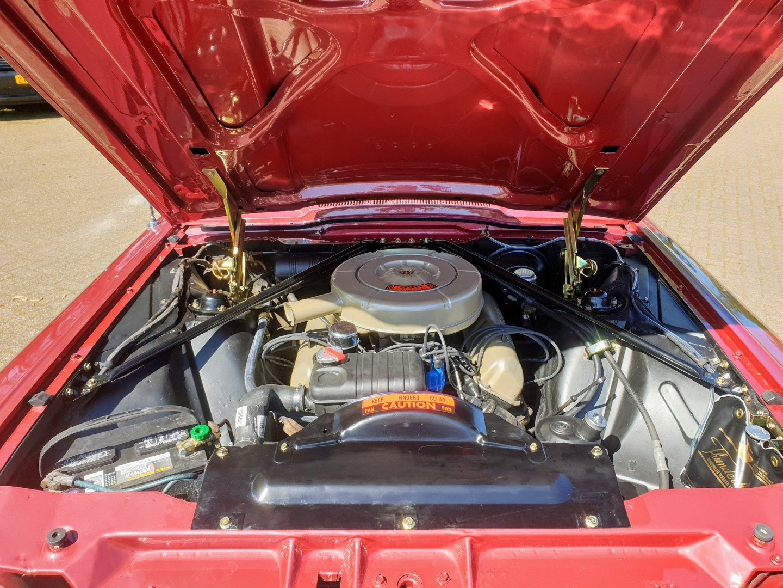 1964-Ford-Thunderbird-Convertible-15
