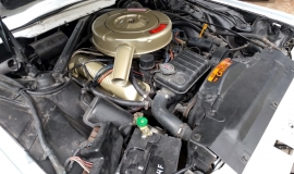 1964 Ford Thunderbird Landau Bird Nest (3)