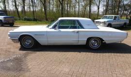 1964-Ford-THunderbird-hardtop-360ci-2