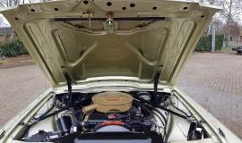 1965 Ford Thunderbird Convertible 390ci - Ivy Gold (15)