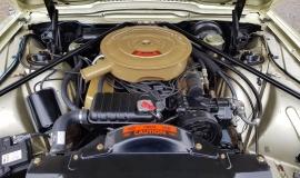1965 Ford Thunderbird Convertible 390ci - Ivy Gold (17)