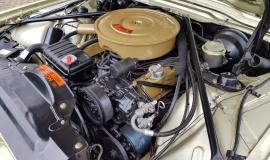 1965 Ford Thunderbird Convertible 390ci - Ivy Gold (18)