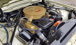 1965 Ford Thunderbird Convertible 390ci - Ivy Gold (19)