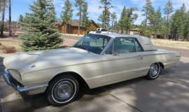 1966 Ford Thunderbird Hardtop Wimbledon White (3)
