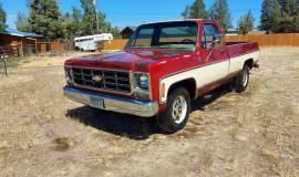 1979-Chevrolet-C20-Scottsdale-350ci-V8-1