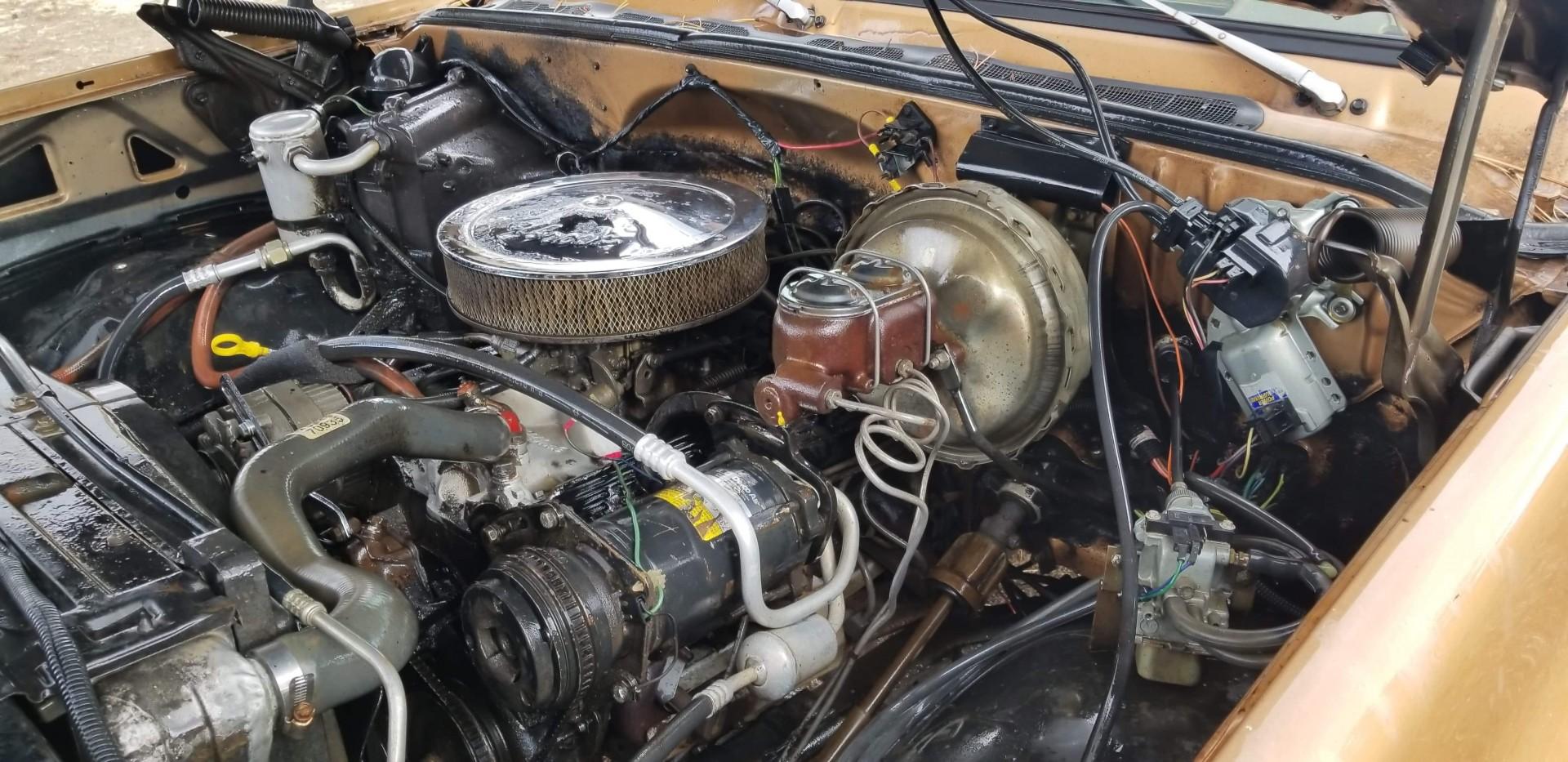 1979 Chevrolet C20 383ci (2)