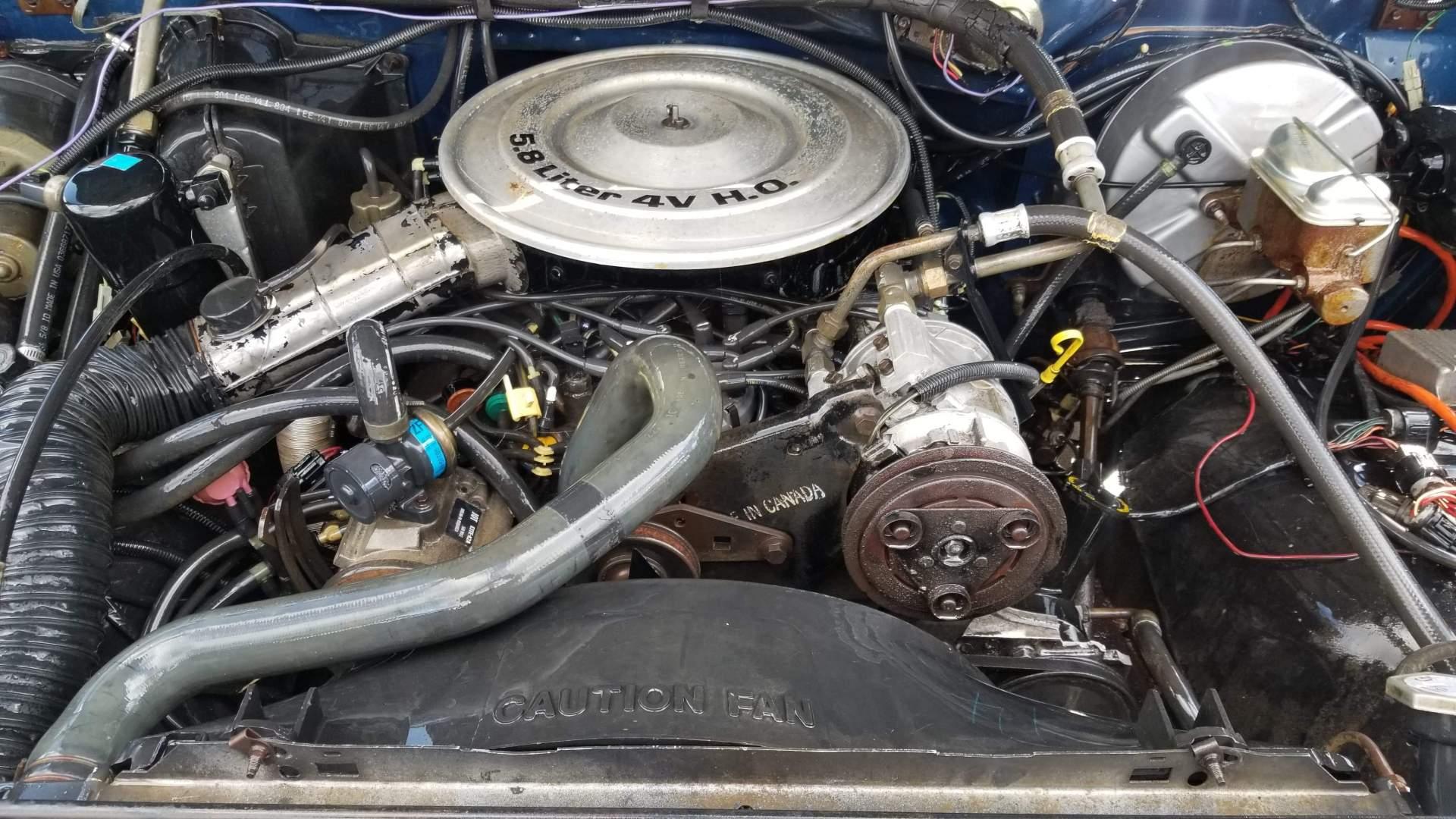 1986-Ford-F150-XLT-351ci-8